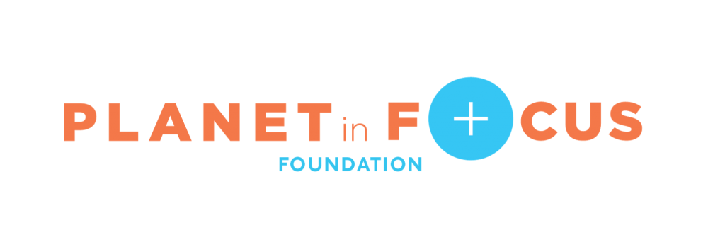 Foundation Title