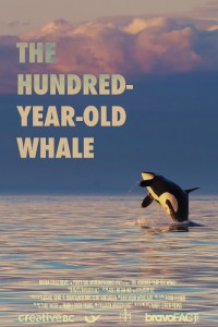 hundredyowhale