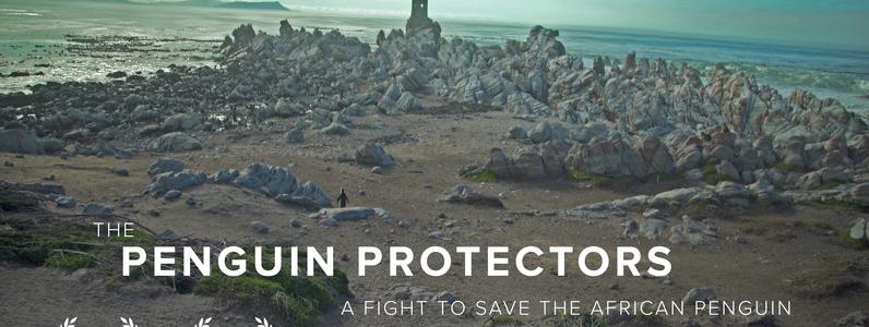 penguin protectors